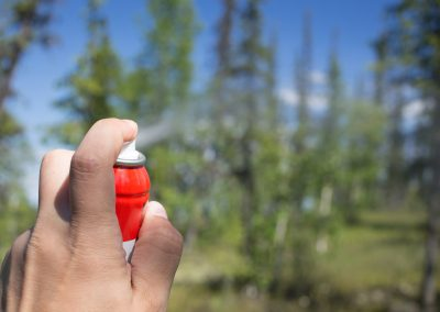 The use of insect repellent in the woods